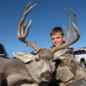 texas mule deer hunts texas panhandle