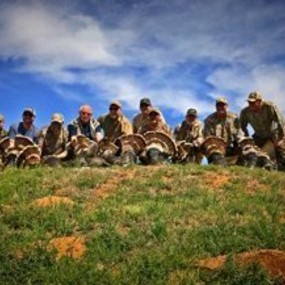 texas rio grande turkey hunts