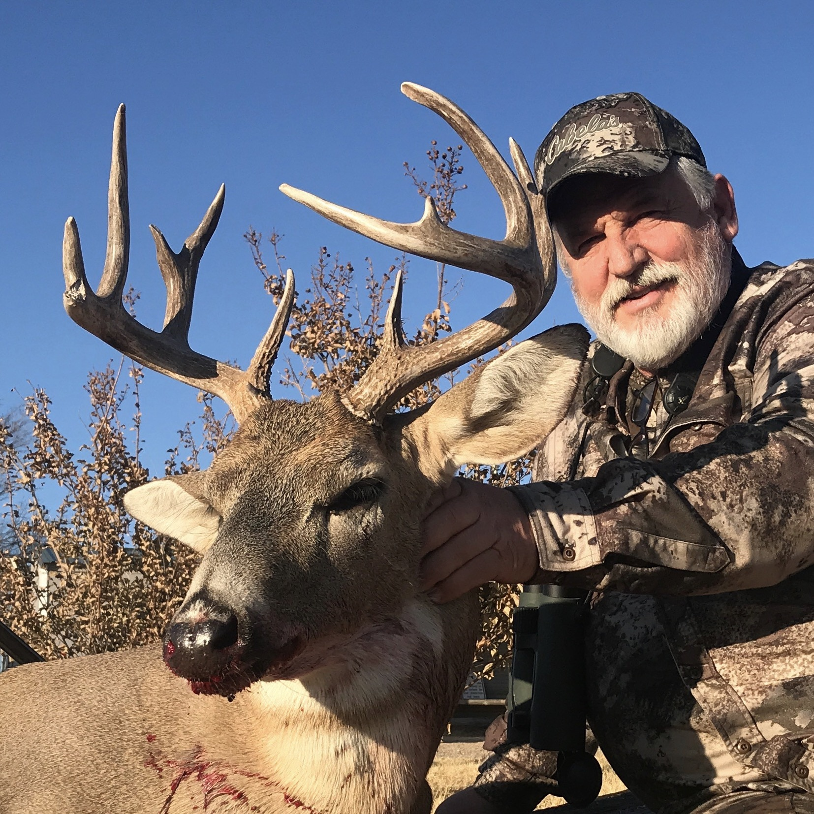 whitetail deer at all american outfitter in the texas panhandlle