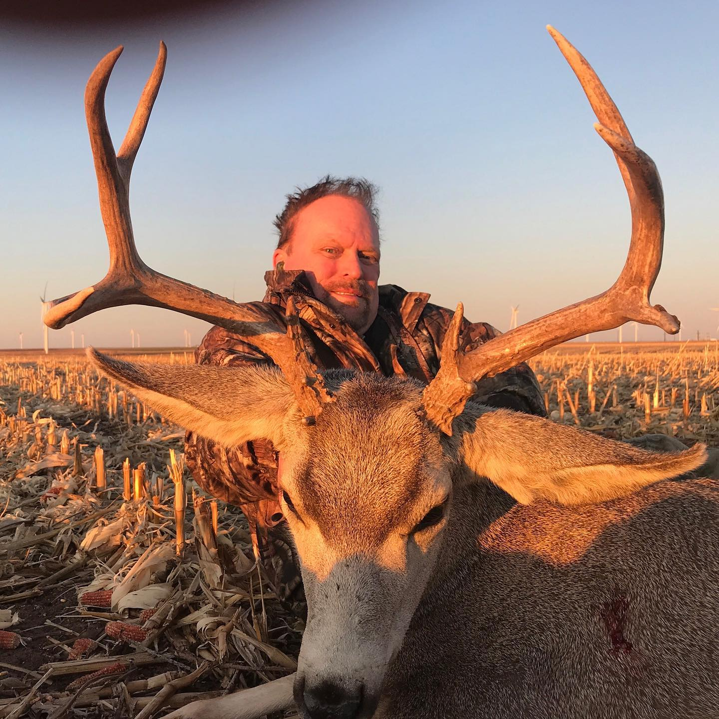 texas panhandle mule deer hunts